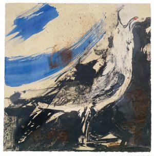 EARTH GULL ARTIST PROOF (5)