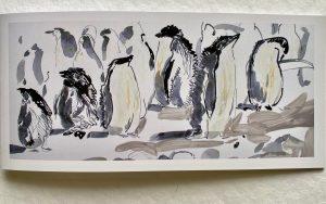 FOLDING GREETING CARD: ADELIE PENGUIN ROOKERY.