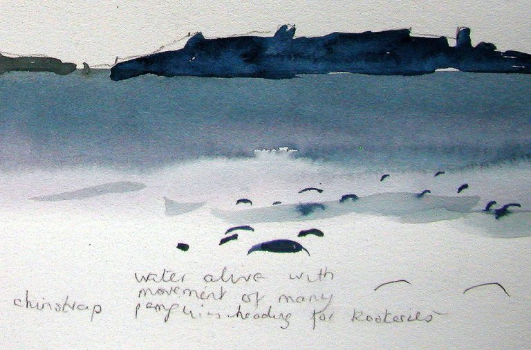 ON LOCATION SOUTH SHETLAND ISLANDS passing sketchbook