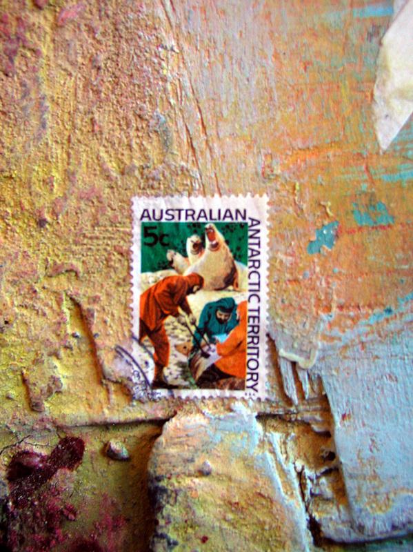 ON REFLECTION AUSTRALIAN ANTARCTIC TERRITORY