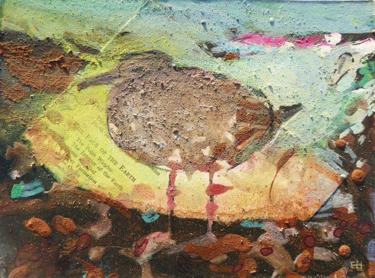 FRANCES-HATCH-Immature-herring-gull-sidmouth-esplanade